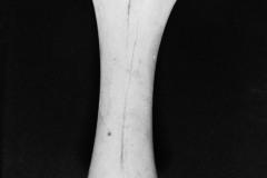 ossa-tre-1